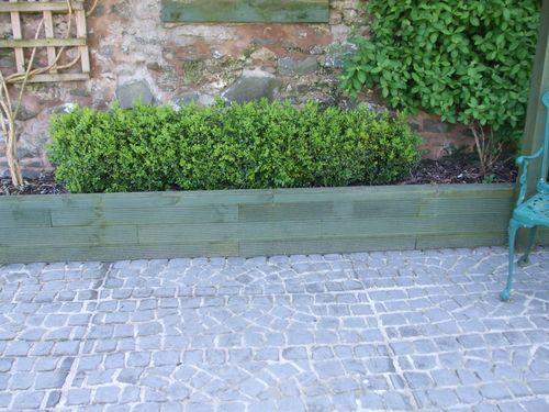 Box hedge planter