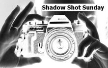 Shadow Shot Sunday logo1[1]